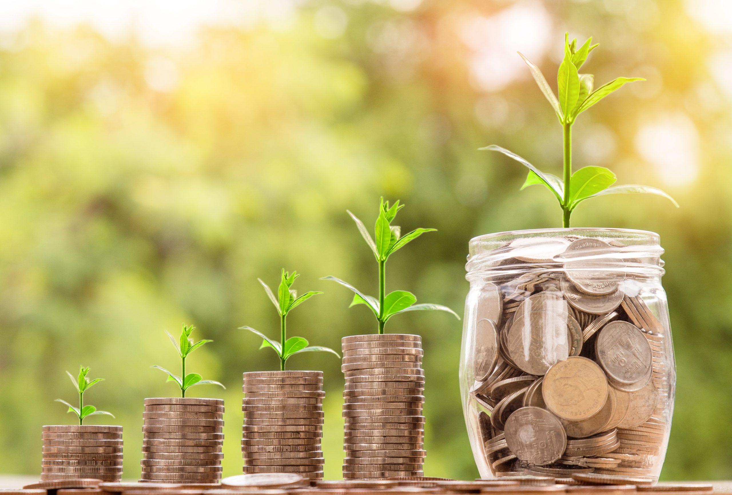 Rosnące oszczędności